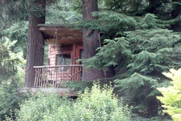 treeHouse03