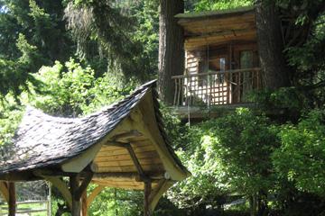 treeHouse10