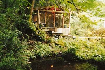 woodland04