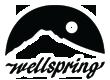 Wellspring Spa